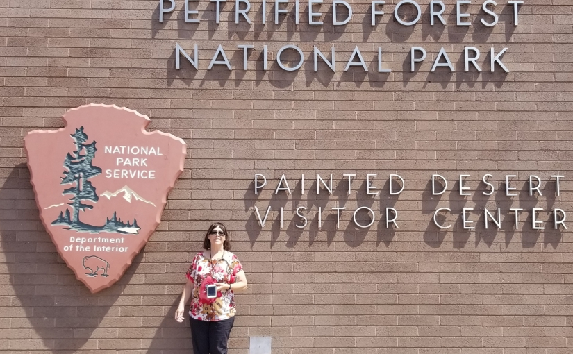 Petrified Forest and MeteorCrater